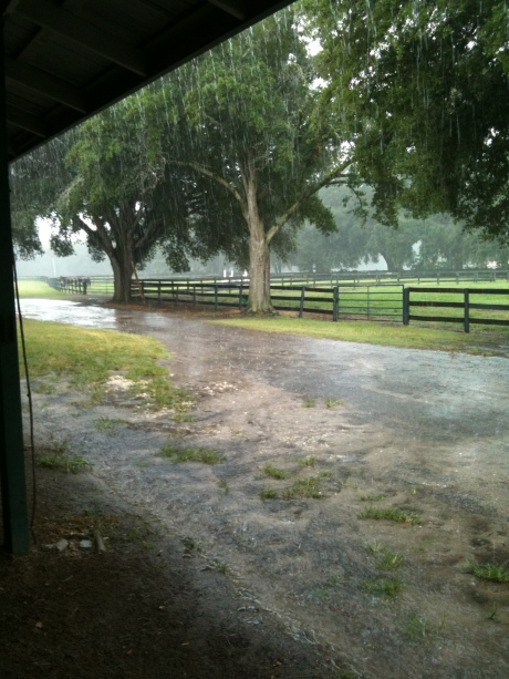 Rain Falling at the farm