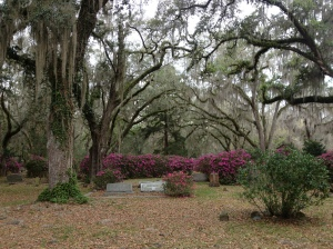 Photo of Micanopy cemetary